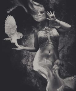 Esther_Limones-Quimera-Digital_Art_Photocollage-16X20