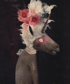 Daniela_Spallanzani-Unicornis-Fine_Art_Paper-A4